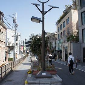 澀谷貓街(Cat Street)