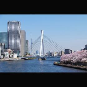 Chuo-Ohashi Bridge