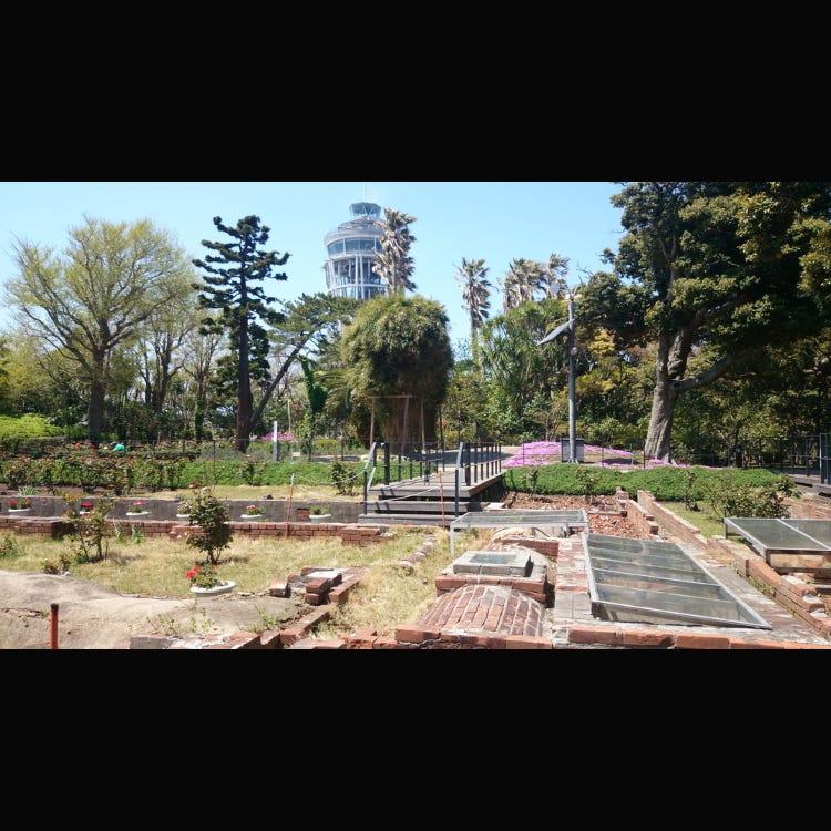Samuel Cocking Garden