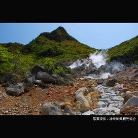 오와쿠다니 계곡
