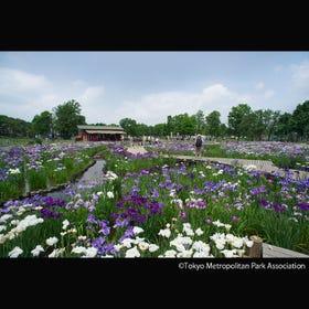 Mizumoto Park