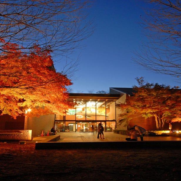 사이타마 현립 자연박물관