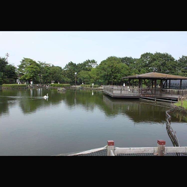 Arakawa Nature Park