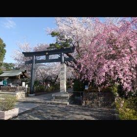 Shoin Shrine