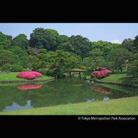 Rikugien Gardens