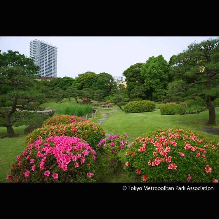 Kyu Shiba Rikyu Garden