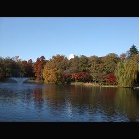 이노카시라 온시 공원