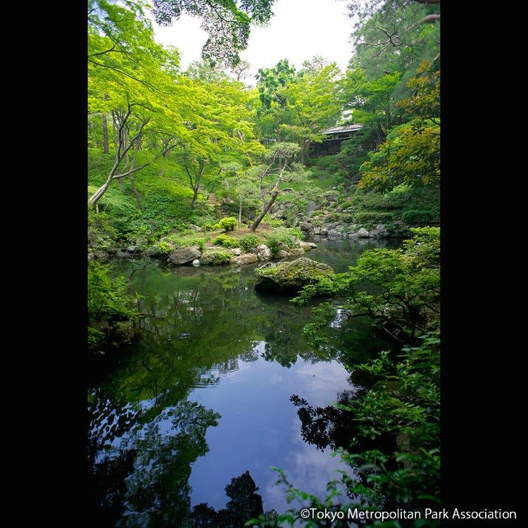 Tonogayato Gardens
