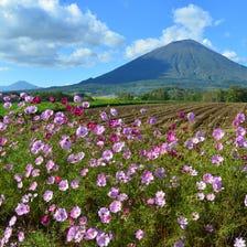 Mount Yotei