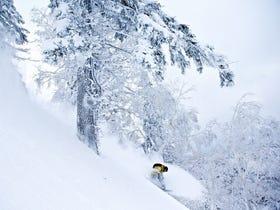 札幌手稻滑雪場