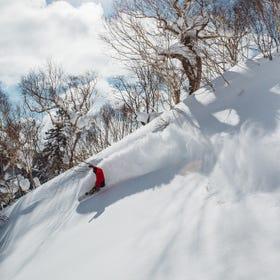 札幌國際滑雪場