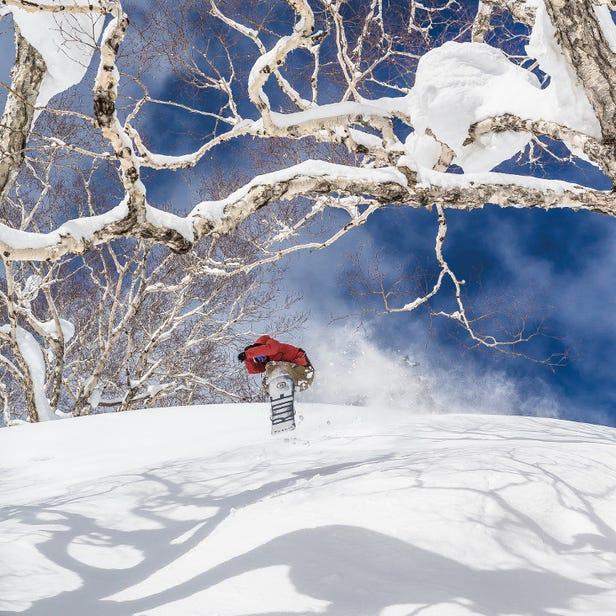 삿포로 고쿠사이 스키장