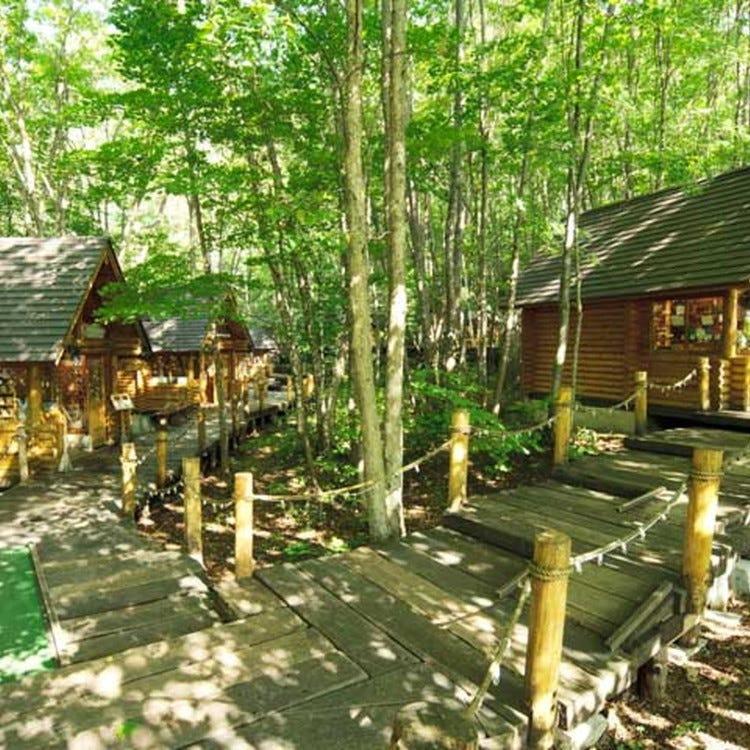 森林精靈的陽台