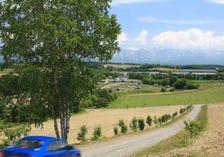 Panorama Road