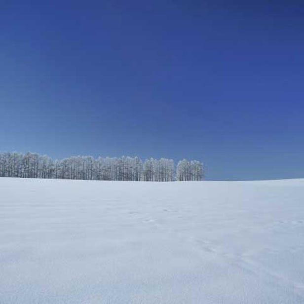 Mild Seven Hills