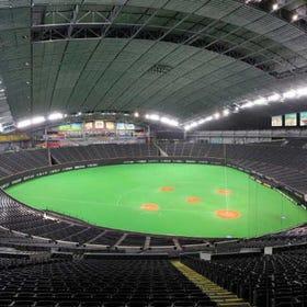 札幌巨蛋体育馆