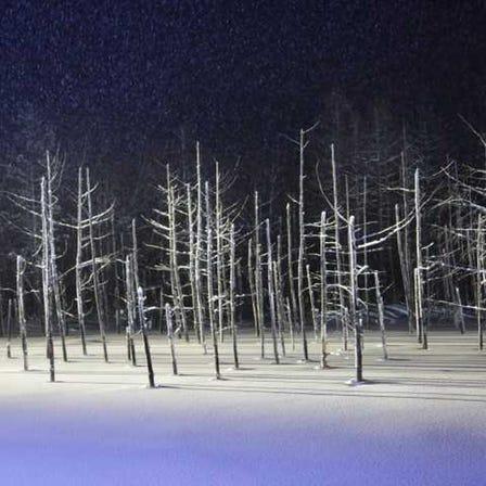 Shirogane Blue Pond (Aoiike)