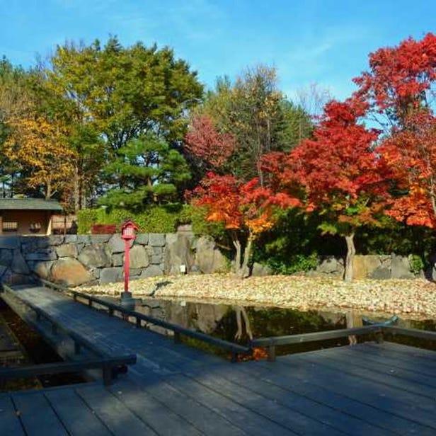 Yurigahara Park
