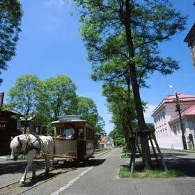 Historical Village of Hokkaido