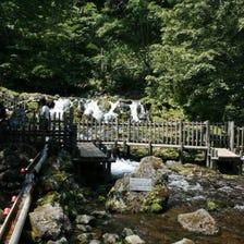 Fukidashi Springs Mount Yotei