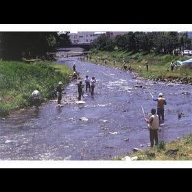FUJIKIGAWA・CHITOSEGAWA