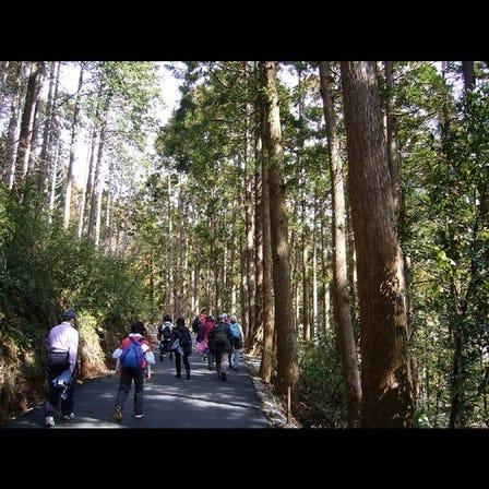 幕山ハイキングコース