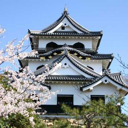 히코네조 성