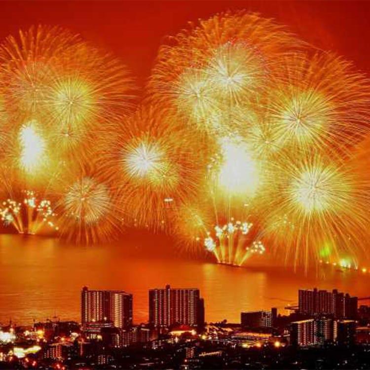 Lake Biwa Great Fireworks Festival