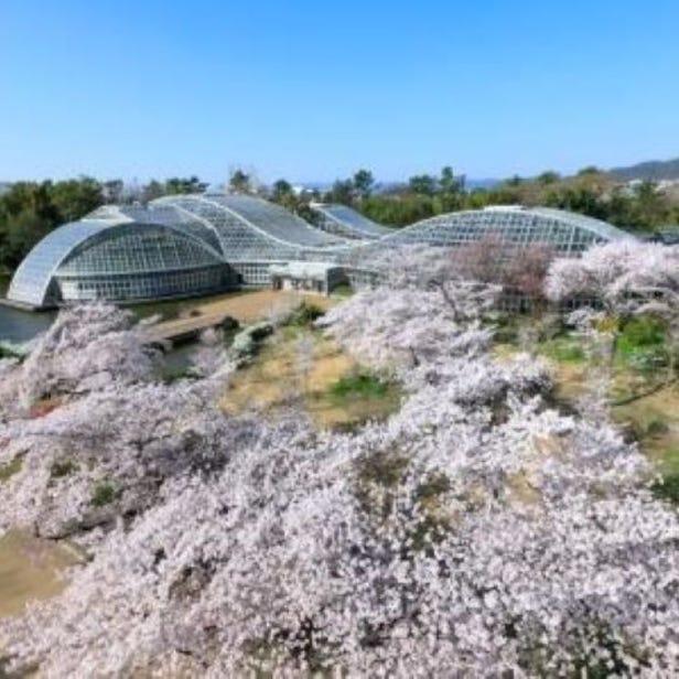 Koyto Botanical Gardens