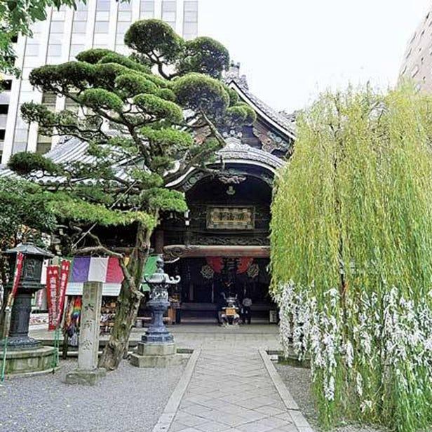 Rokkaku-do  Temple (Chohoji Temple)