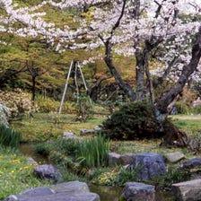 Shosei-en Garden (Kikokutei)