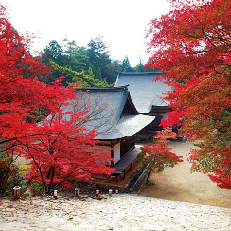 Jingo-ji Temple