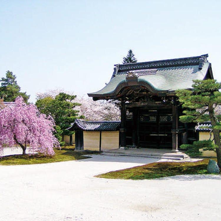 旧嵯峨御所 大本山 大覚寺