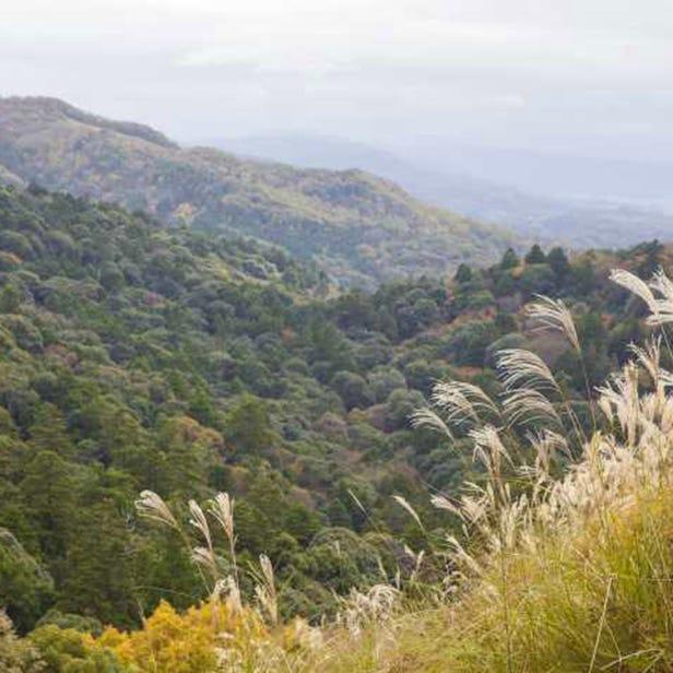 와카쿠사야마 산