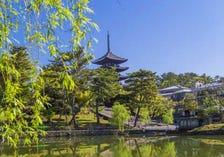 Sarusawa Pond