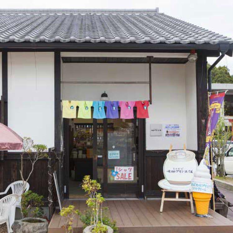 Mahoroba Daibutsu Pudding Honpo Yumekaze Square Branch