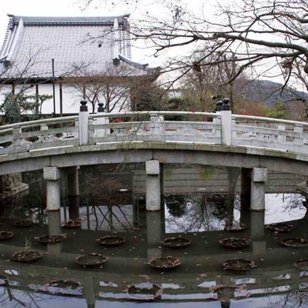 곤카이코묘지 절