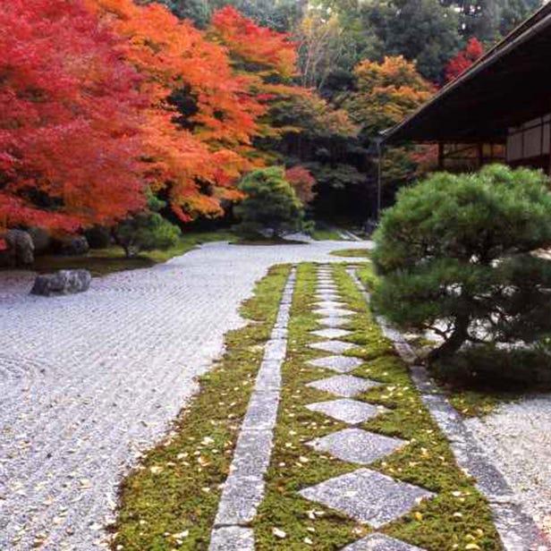 Tenjuan Garden