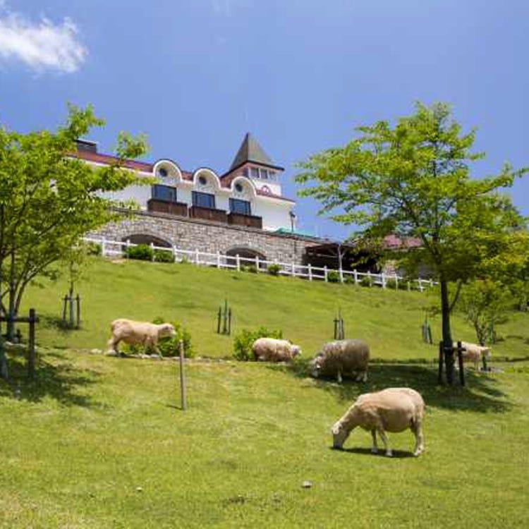 고베시 롯코산 목장