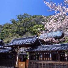 Kitano Tenmangu Shrine