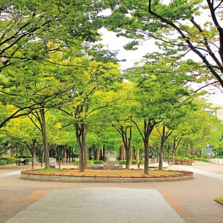 Kobe East Park
