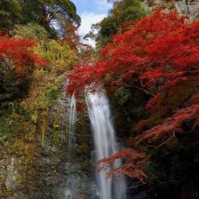 Minoh Falls