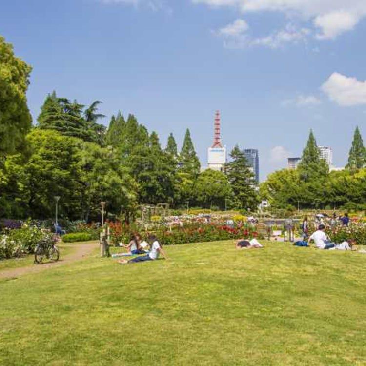 우쓰보 공원