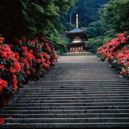 Katsuo-ji Temple