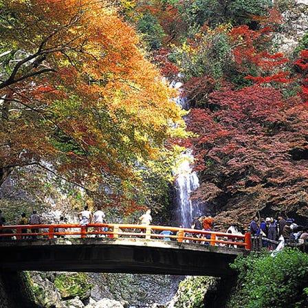 大阪府營 箕面公園
