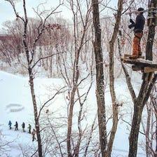 Forest Adventure Eniwa
