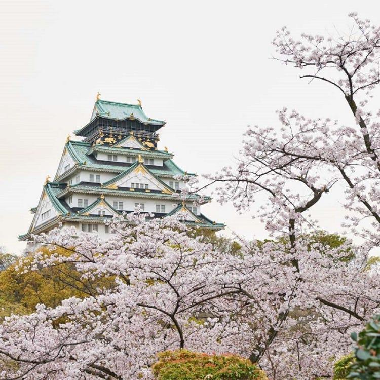 오사카성 공원