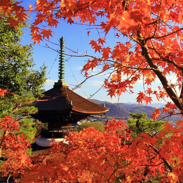 Jojakko-ji Temple