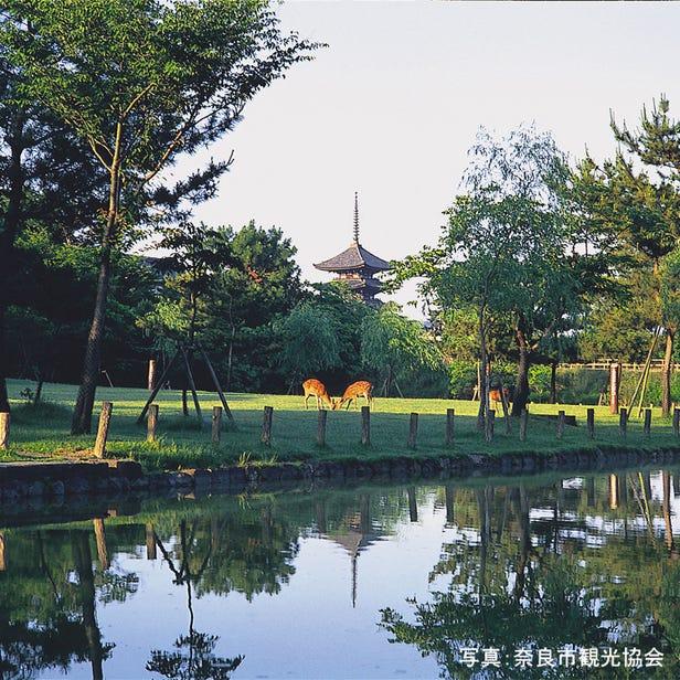 나라 공원