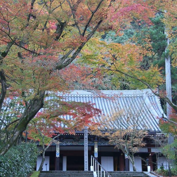 禪林寺(永觀堂)